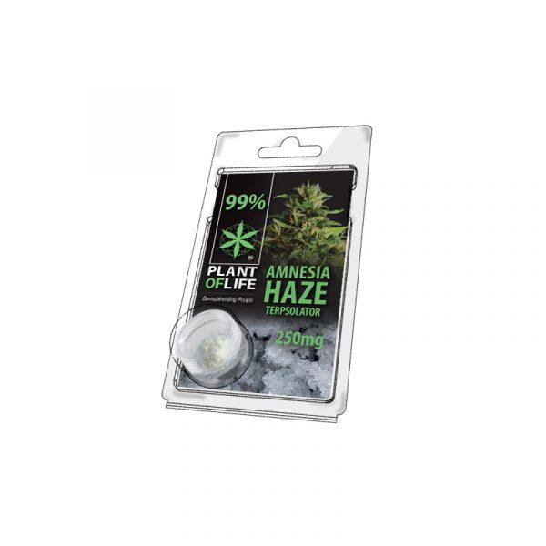 Buy Amnesia Haze Terpsolator 99% CBD 250 mg