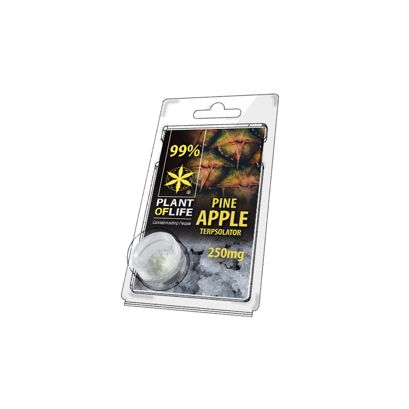 Buy Pineapple Terpsolator 99% CBD 250 mg