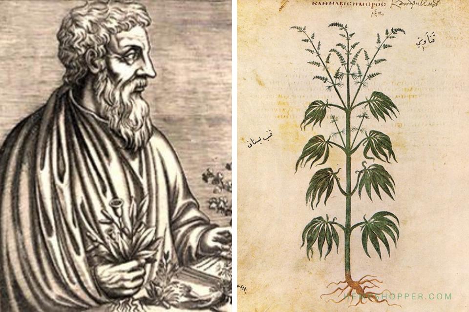 77 CE: Dioscorides describes cannabis in 'De Materia Medica'
