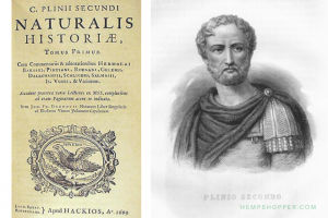 77 - 79 CE: Pliny the Elder describes the cultivation and the industrial and medical use of cannabis