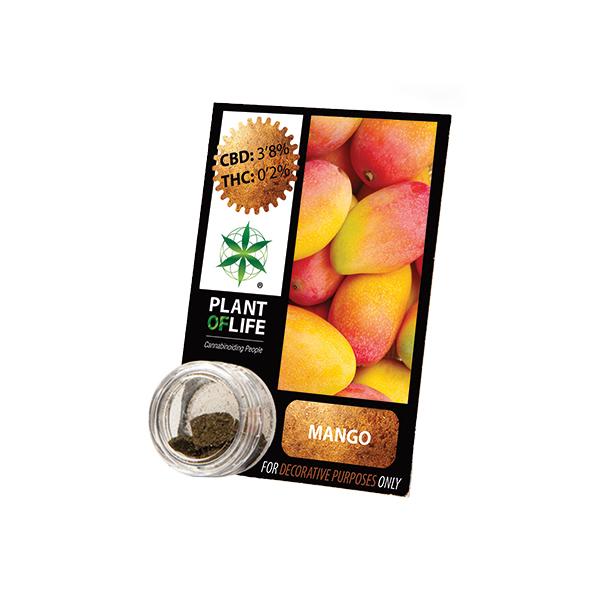 Buy Mango Solid 3.8% CBD 1 g