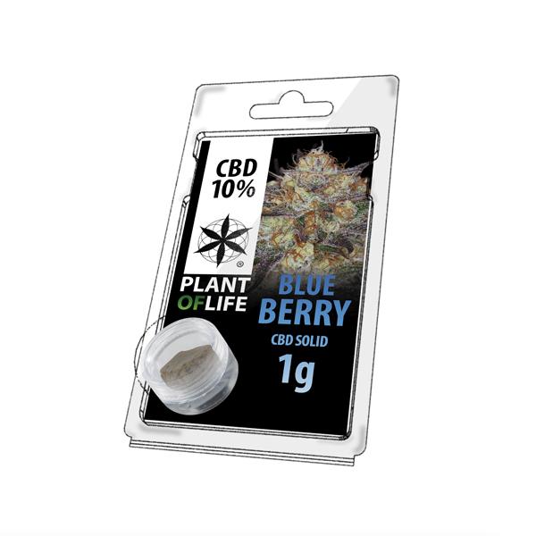 Buy Blueberry Solid 10% CBD 1 g