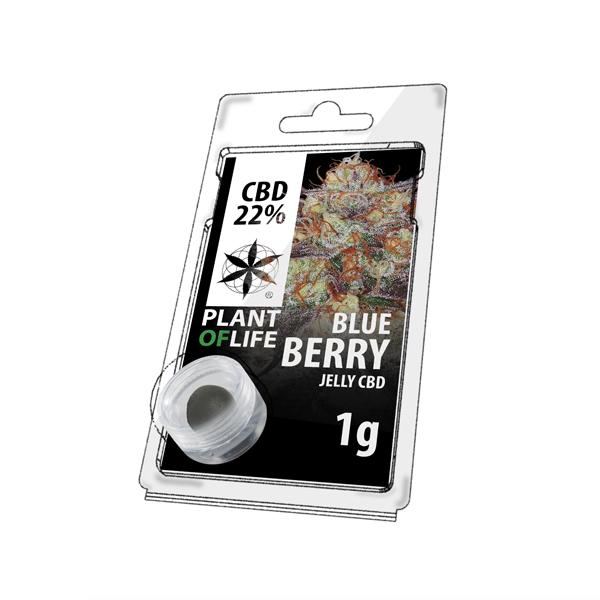Buy Blueberry Jelly 22% CBD 1 g