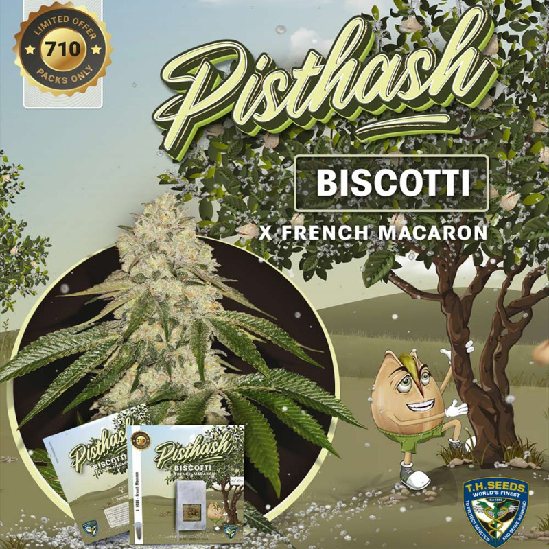 Pisthash Limited Edition (Feminized Seeds) T.H.Seeds